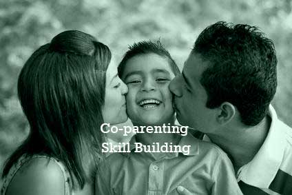 Co-parenting skill building